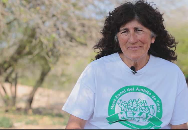 Un paseo por el monte del Gran Chaco en la serie Montaráz