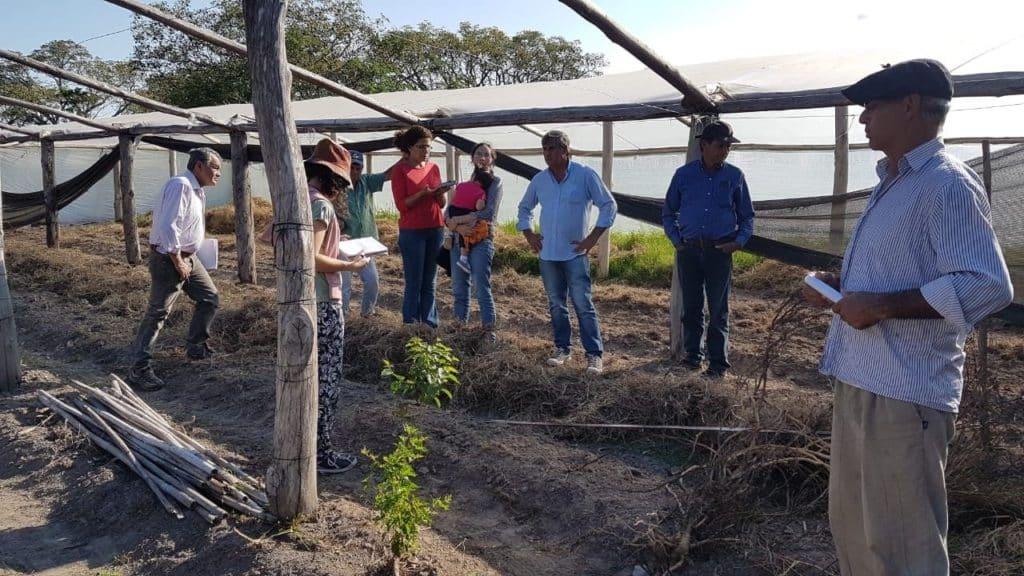 Organizan taller internacional sobre evaluación de sistemas agroecológicos