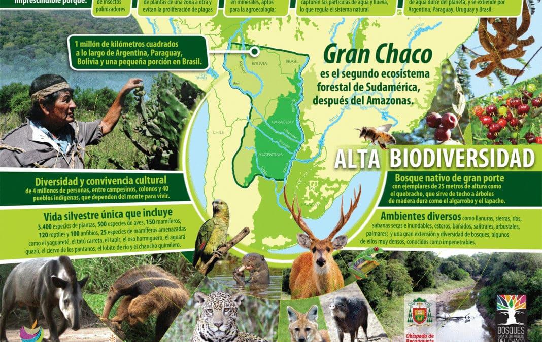 El Gran Chaco en el Sínodo por la Amazonia