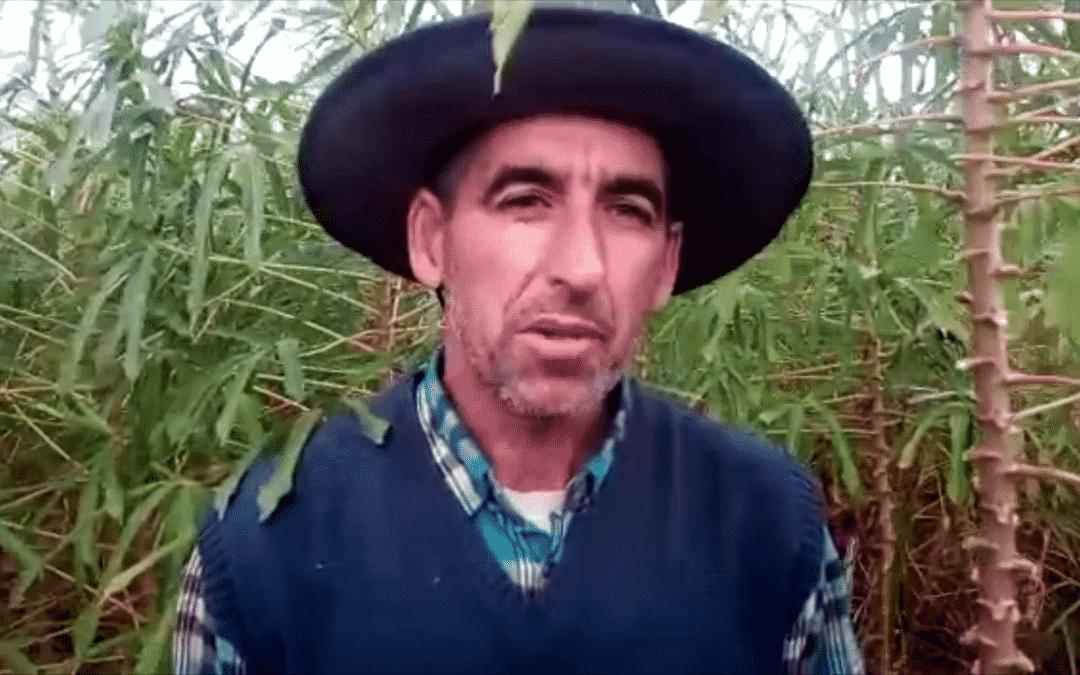 Agroecología para soberanía alimentaria