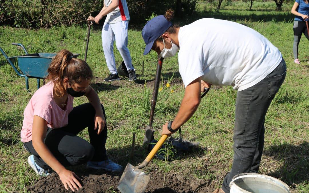 Plantación de árboles nativos en La Lola