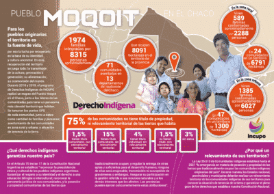 Infografía Pueblo Moqoit