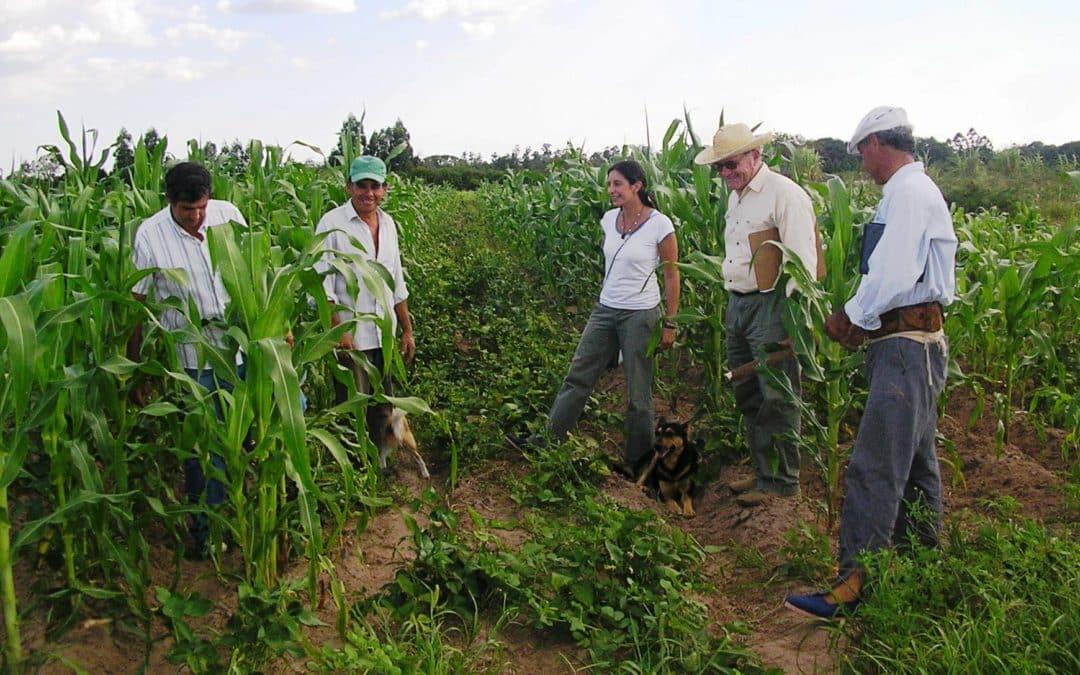 Lanzamiento del II Congreso Argentino de Agroecología