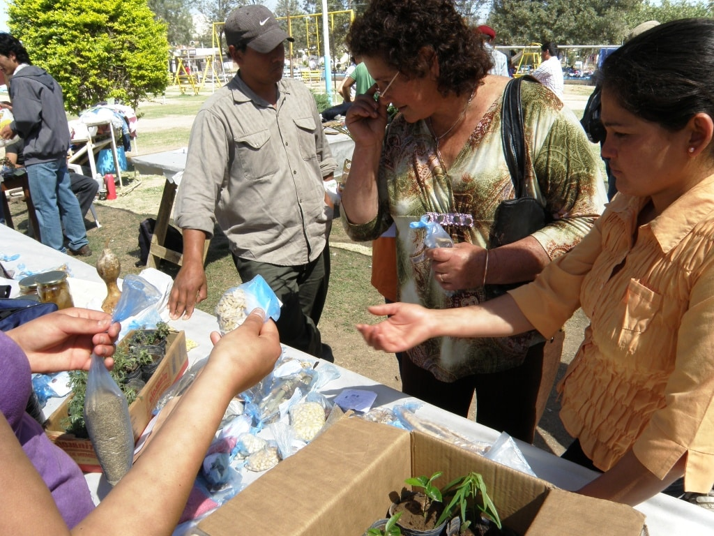 Feria de semillas Chaco