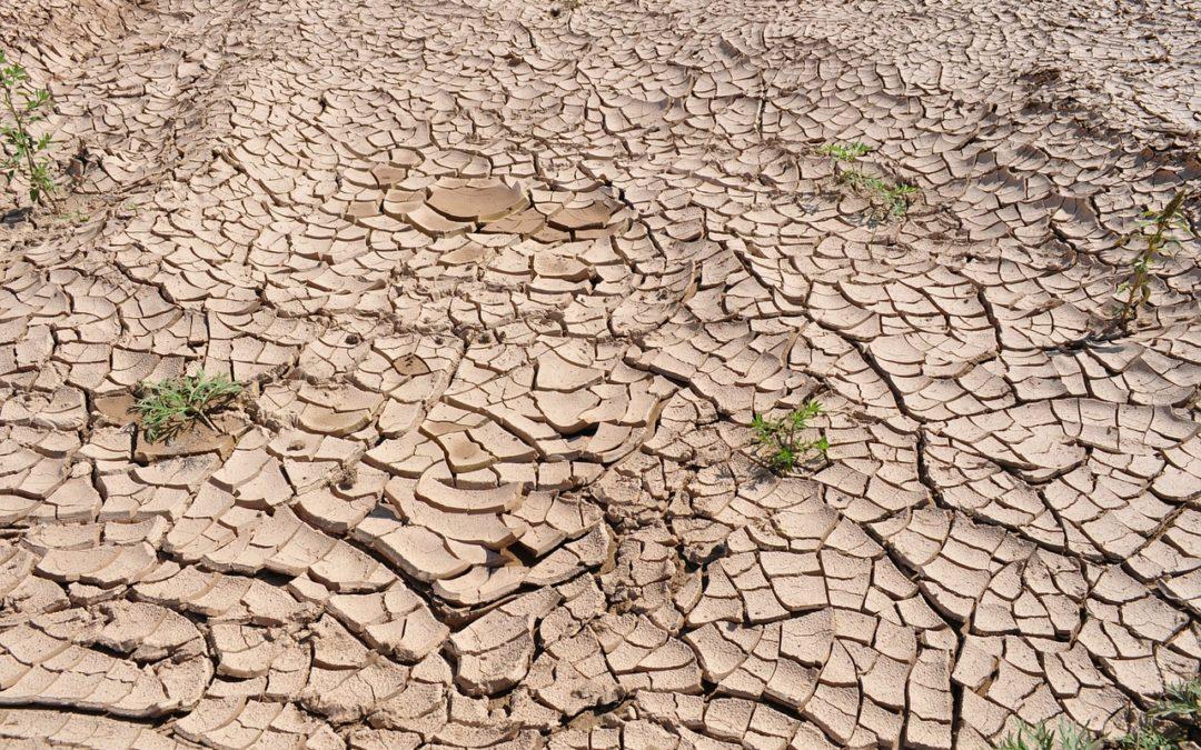 El impacto del cambio climático en Argentina
